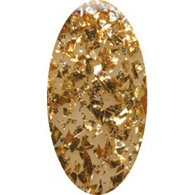 EN Acrylic Color Nº 51 - Gold Mine 10gr.