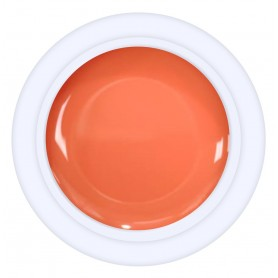 EN Color Gel Limit Stock Nº 26 - 5ml